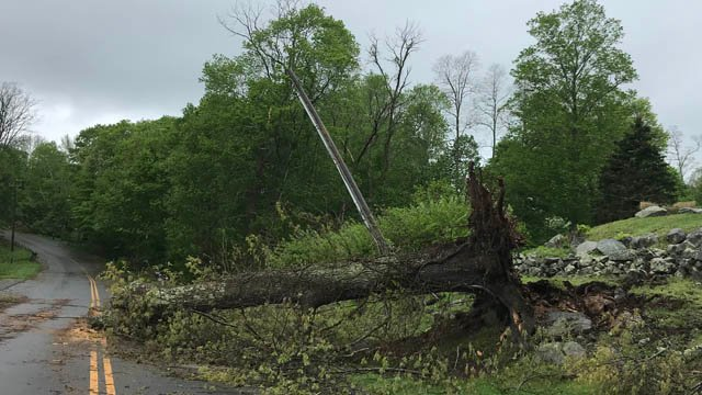 A tree took down a utility pole on Warwick Road in New Fairfield. (Michele Lee/iWitness)