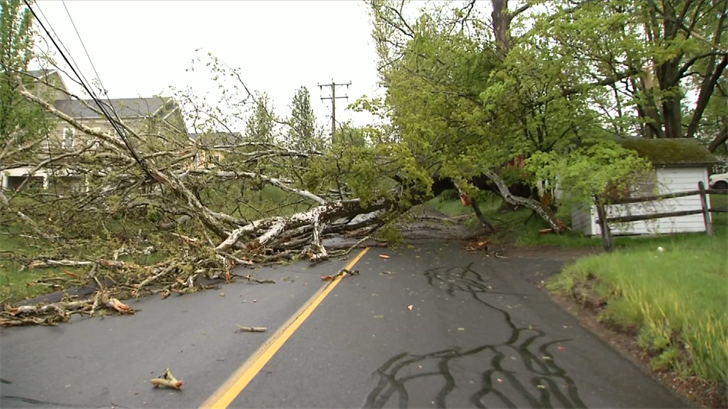 Storm damage on Bullet Hill Road in Southbury (WFSB)