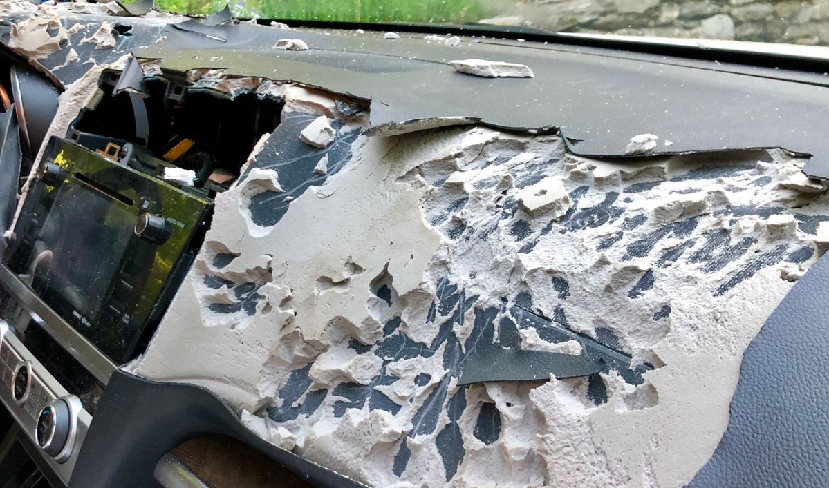 A bear ripped apart a woman's car in Canton after getting trapped inside (WFSB)