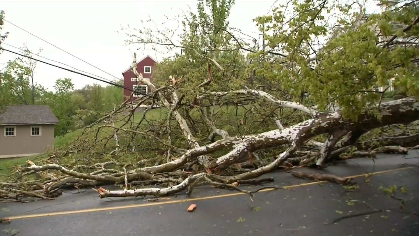 Southbury officials continue to assess the cost of last week's storm damage. (WFSB)
