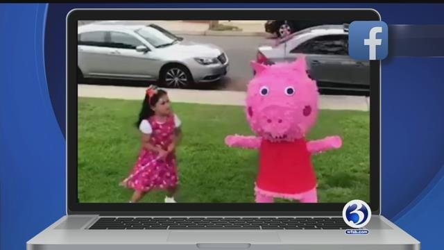 Peppa Pig pinata, doggy hug, lynxes face off, horse on a highway
