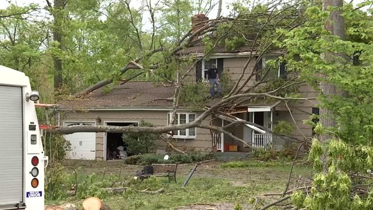Hamden storm damage (WFSB)