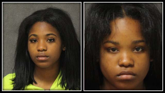 Nychelle Hamilton, 18, and Emony Hamilton, 19, were among the 10 arrested (Ansonia Police)