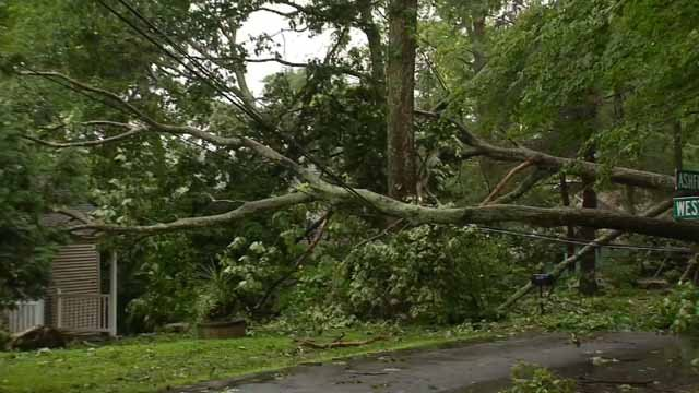 Storm clean up continues in Ashford after storms ripped through the area Tuesday (WFSB)