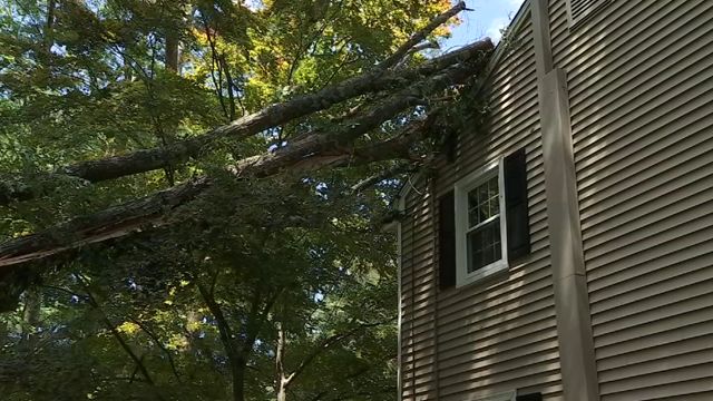 A tree fell onto a home in Simsbury during Tuesday's severe storms (WFSB)