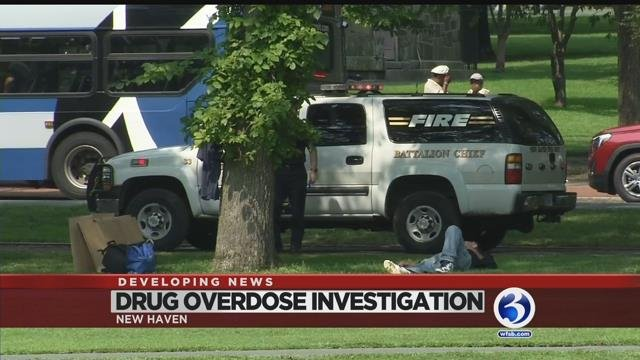 Video: Another round of overdoses reported on New Haven Green