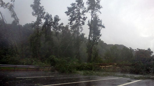 Tree down across I-384 in Manchester