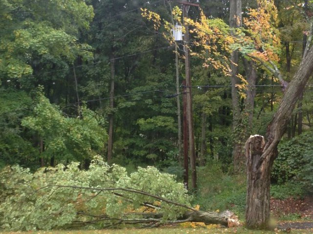 © A viewer sent Eyewitness News this picture of a winds taking a tree branch and power lines in Southbury.