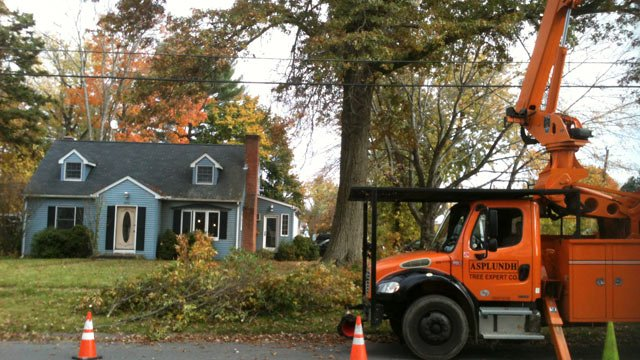 © Tree trimming near power line in Wethersfield.