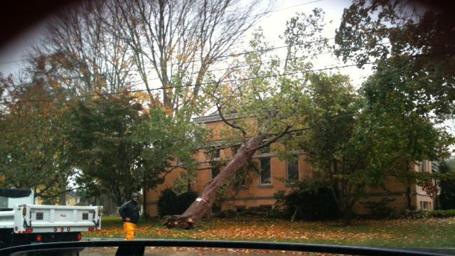 © A tree fell on the Stonington Free Library Monday morning.
