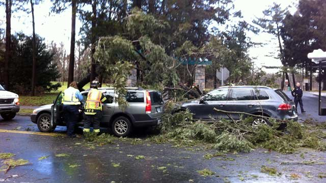 Trees fell on moving vehicles in West Hartford