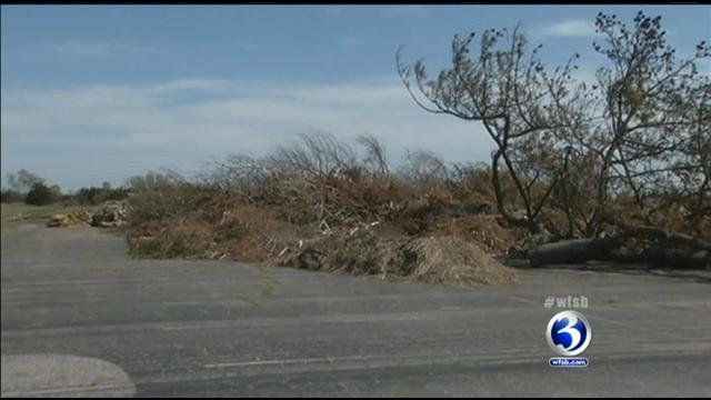 A pile of debris at Hammonasset State Park in Madison
