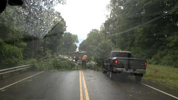 Tree down on Route 85 in Hebron.
