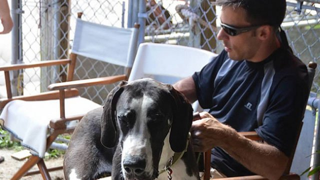 Dan Schroll pets his service dog, which is a Great Dane named Casper,