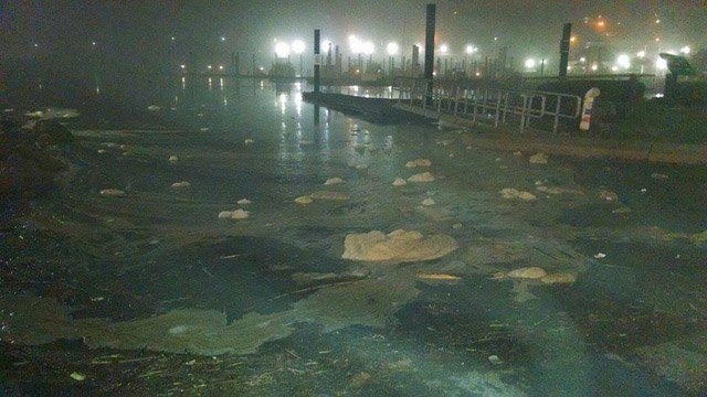 Sewage spotted at the American Wharf boat launch in Norwich. (iWitness photo)