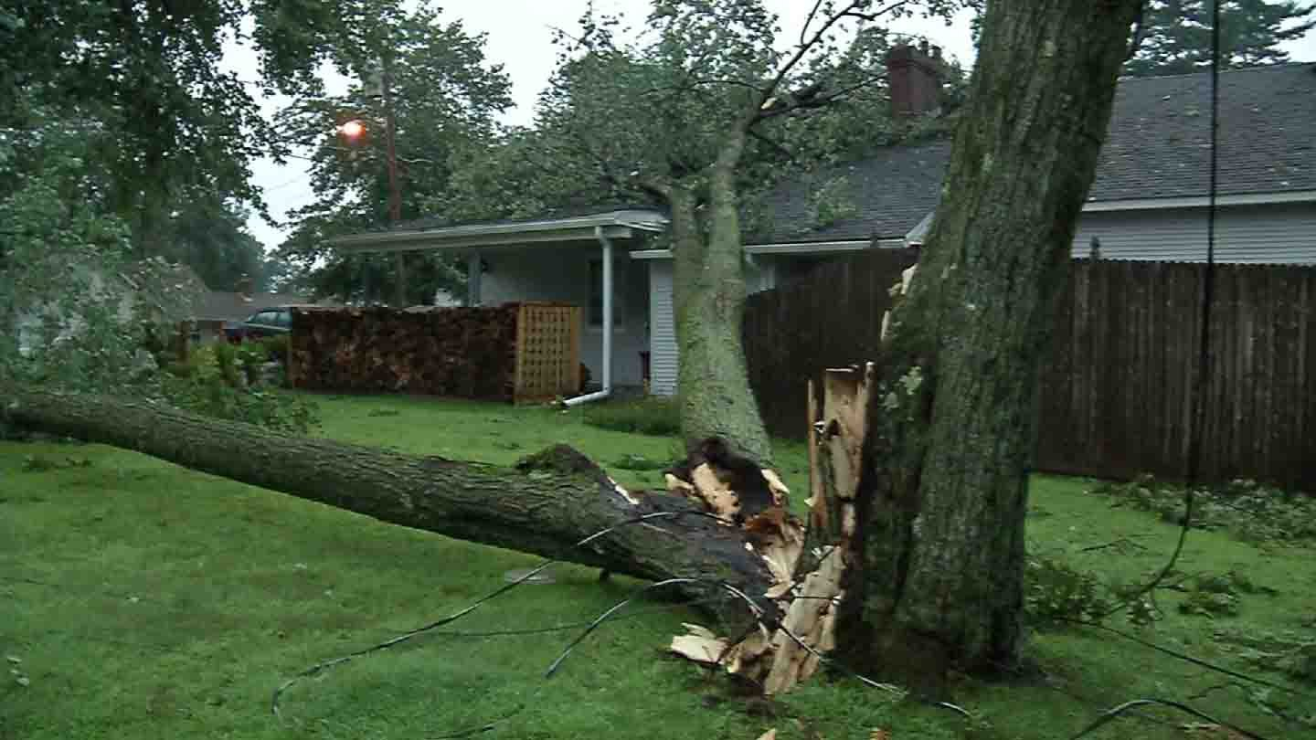 Sunday's storm brought down trees onto some homes. (WFSB photo)