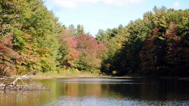 Autumn on Blackledge Brook Pond