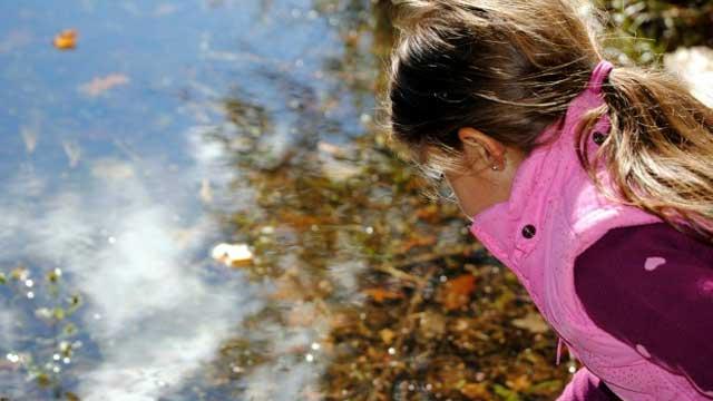 Exploring Blackledge Brook Pond