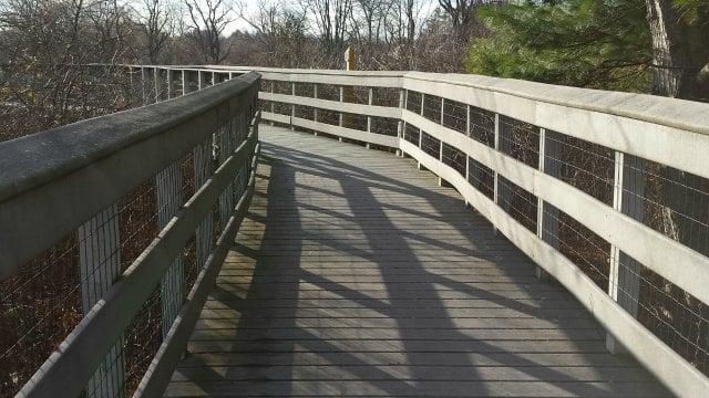 Boardwalk along Wetlands Garden trail at Wickham Park