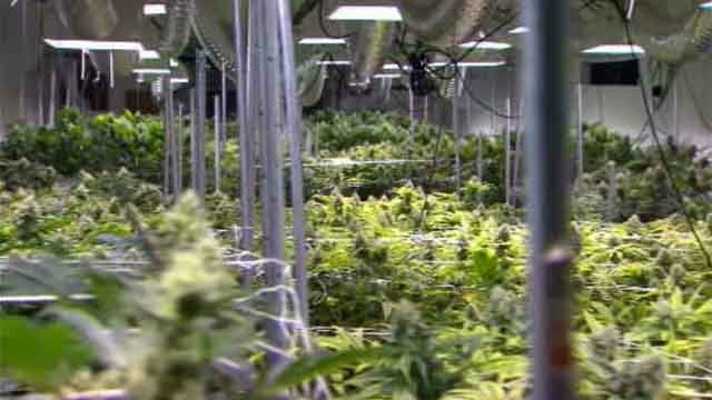 State lawmakers are considering a bill that would make it legal for the production, use and sale of marijuana in Connecticut. (WFSB)