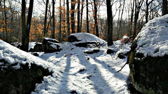 Boulders along trail at East River Preserve (WFSB)