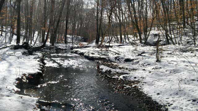Stream along trail at Guilford preserve (WFSB)