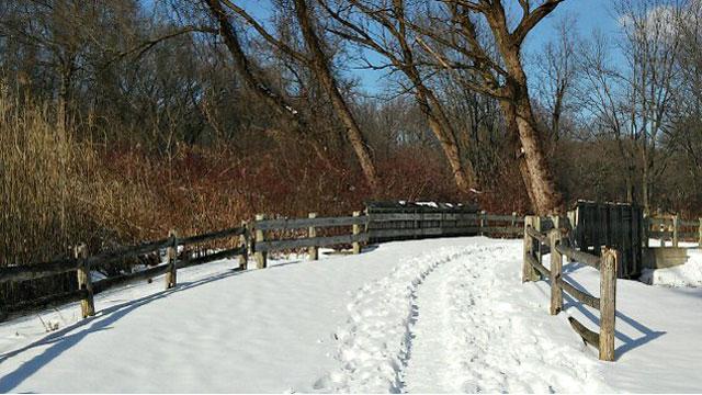 Quinnipiac Linear Trail draped in snow. (WFSB)