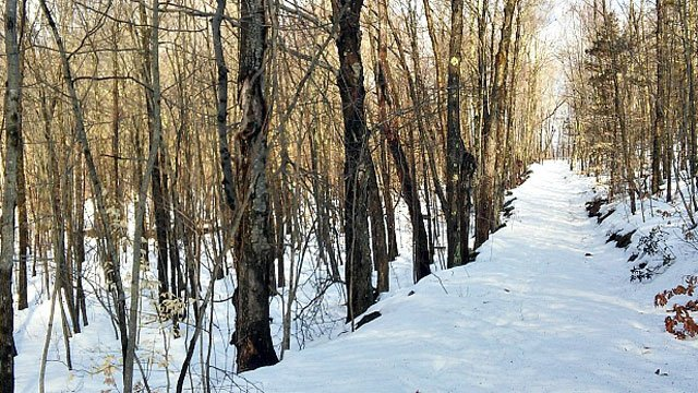 Blue Mound State Park snowy trail -