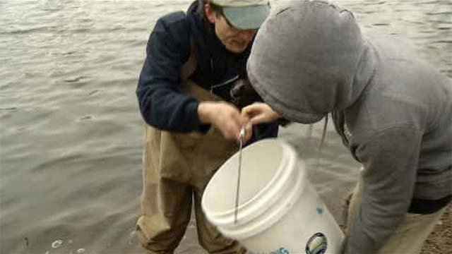 Deep officials students stock ct ponds ahead of fishing for Ct fishing season