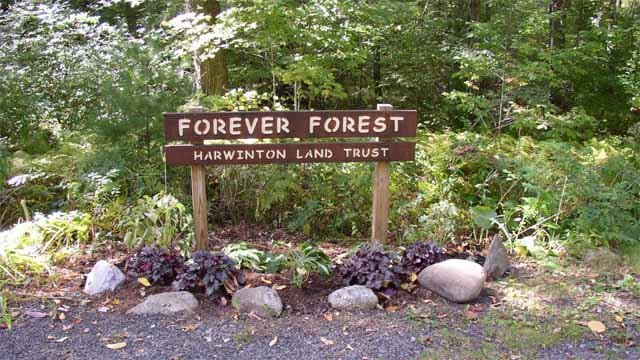 Forever Forest (HarwintonLandTrust.org)