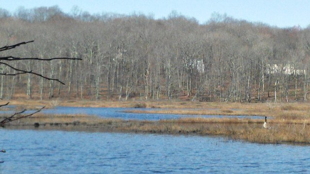 Mono Pond as seen from the trail (WFSB)