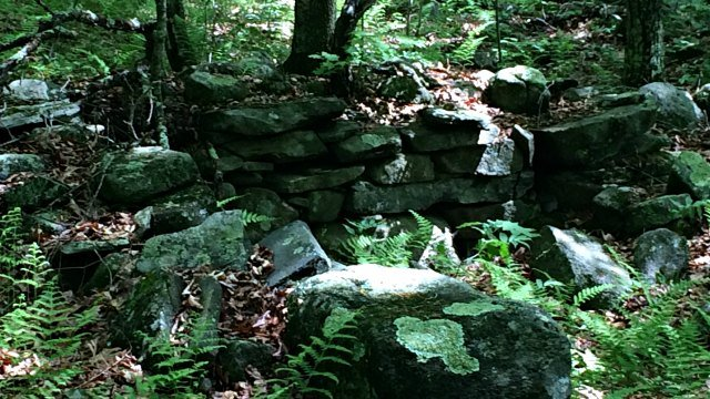 Remnants of historic stone foundation
