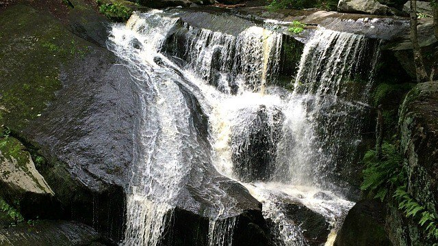 Check out one of a handfall of waterfalls at Enders State Forest. (WFSB)