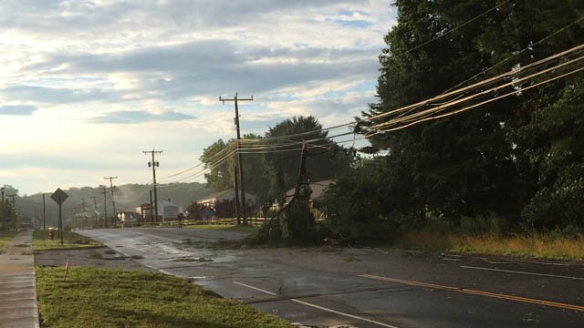 Downed trees closed a portion of Route 6 in Bethel. (iWitness photo)