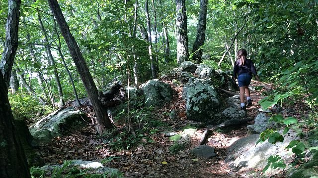 Hiking the trail around Millers Pond