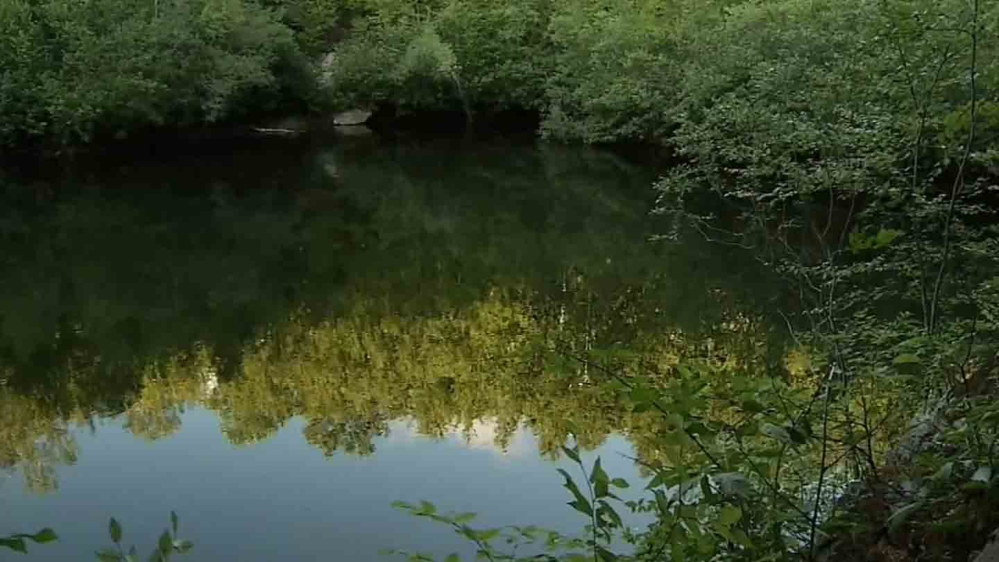 An unresponsive swimmer was pulled from this Middletown quarry off of Bow Lane on Wednesday. (WFSB photo)