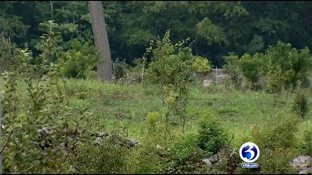 State police searched a landfill in Putnam. But nothing was located by investigators. (WFSB)