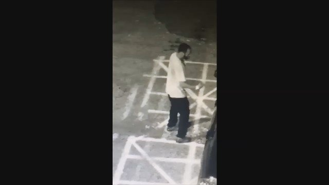 New Haven police search for suspect accused in car break-ins (New Haven Police)