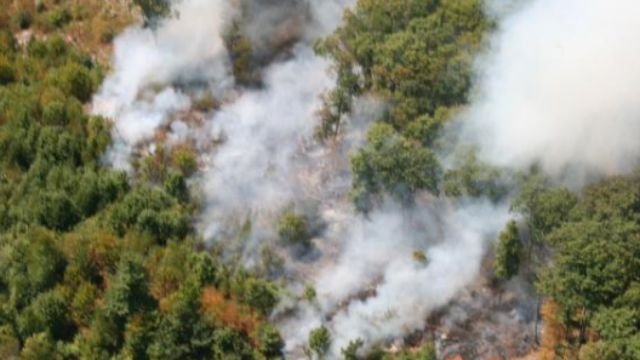 This aerial photo of the brush fire in New Fairfield. (Connecticut Wing, Civil Air Patrol)