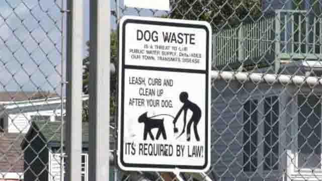 Lawsuit filed over Stonington dog park (WFSB)
