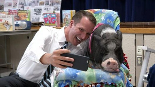 Our own Mark Zinni was hog heaven today! (WFSB)