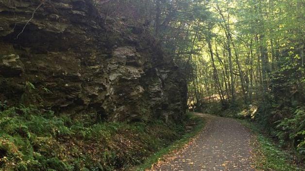Hop River Trail cutting through the bedrock. (WFSB)
