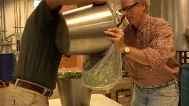 CT grown hops used in Thomas Hooker beer (WFSB)