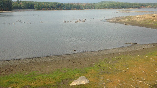 Bristol Water Department is enforcing mandatory restrictions for their customers due to low reservoir levels. (WFSB)