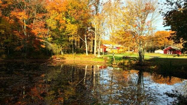 Pond at trailhead at Parmelee Farm