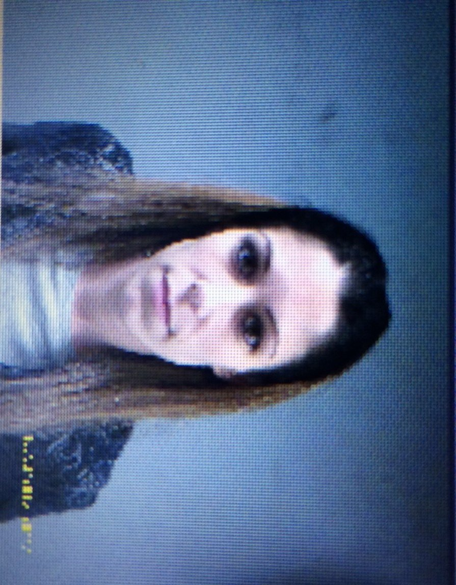 Mug shot Jennifer Valiante