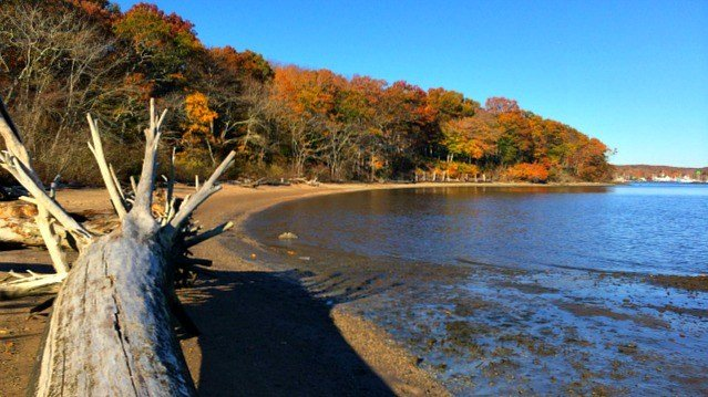 Beach along CT River in Turtle Creek Preserve
