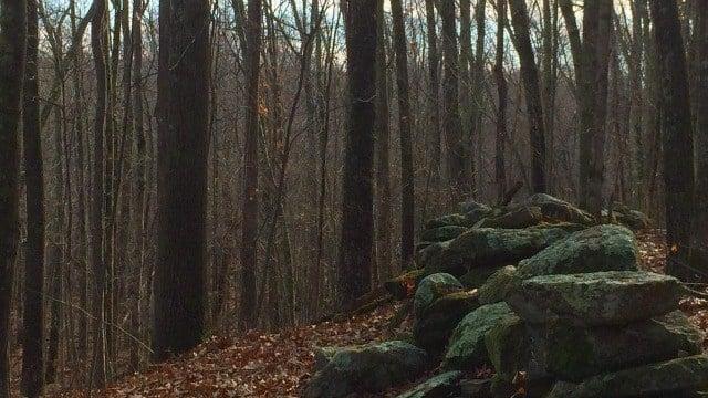 Rock walls along the trail
