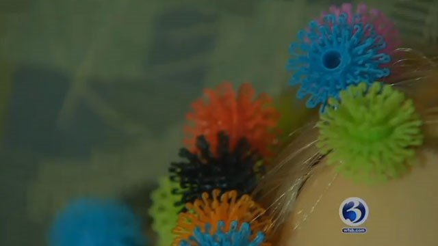 There are complaints that Bunchems are damaging children's hair. (WFSB)