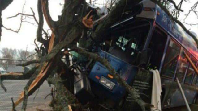 A CT Transit bus driver was seriously injured after the crash. (@LtFoley)